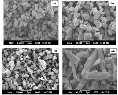 SEM image of MoO3 nanoparticles at different annealing temperatures (a) as-prepared, (b) 400 °C, (c) 500 °C and (d) 600 °C